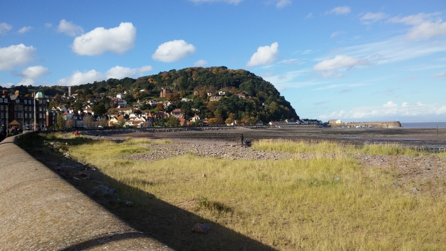 FALLING FOR MINEHEAD