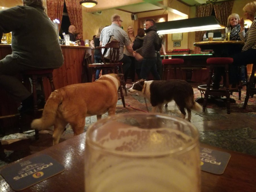 HARTSHEAD – PUB OR KENNEL ?