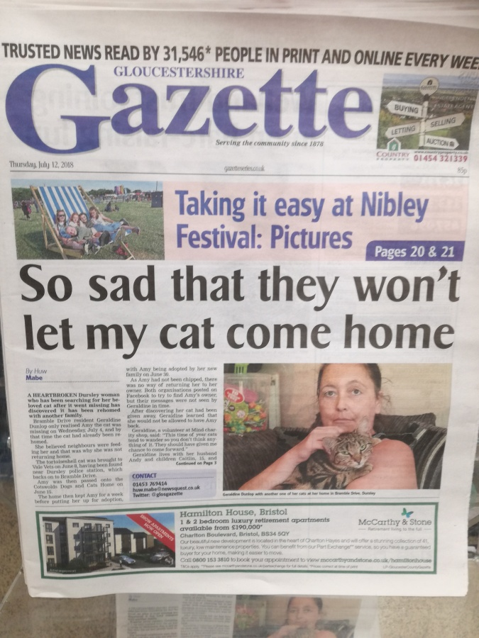 CAT ADOPTION DRAMA IN WOTTON-UNDER-EDGE