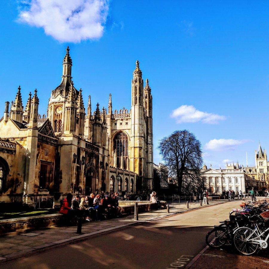 CAMBRIDGE – SCARILYBEAUTIFUL