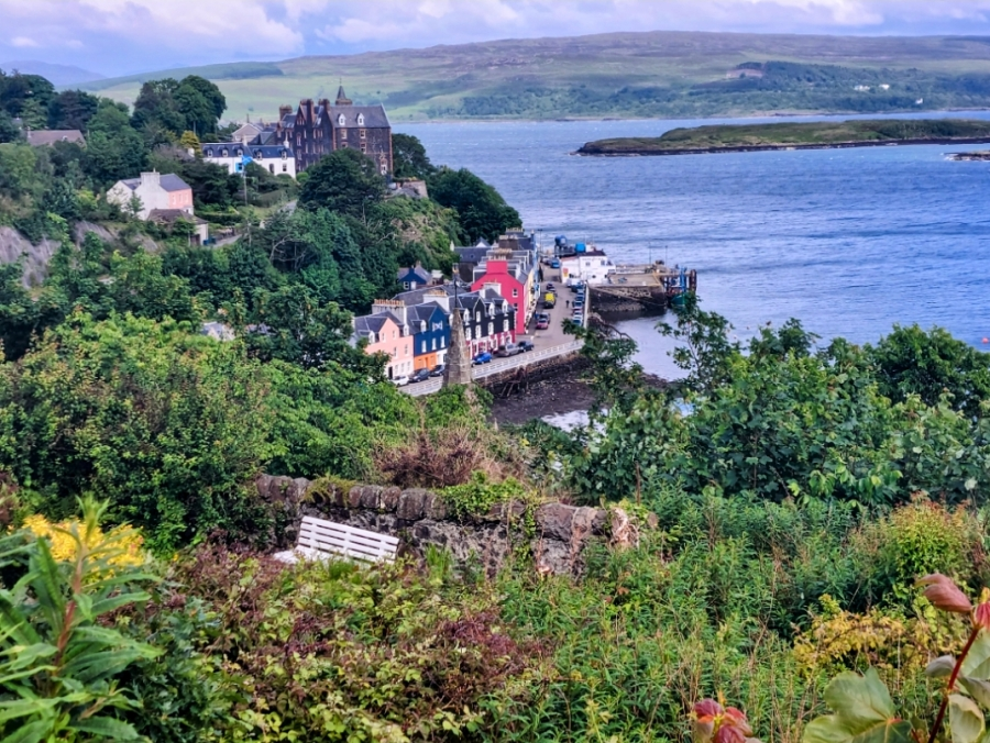 WHAT'S THE STORY INTOBERMORY